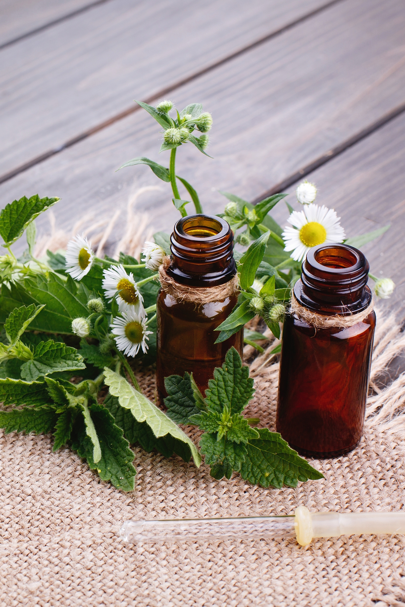 Homeoprophylaxis (and various Prophylaxis) from the desk of a homeopath and naturopath